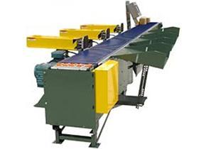 Right Angle Sortation Conveyor- ViperSort